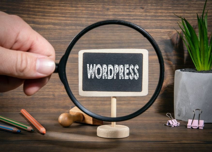 If you are struggling with WordPress, then you are not alone. Blogs grow in number over recent years.