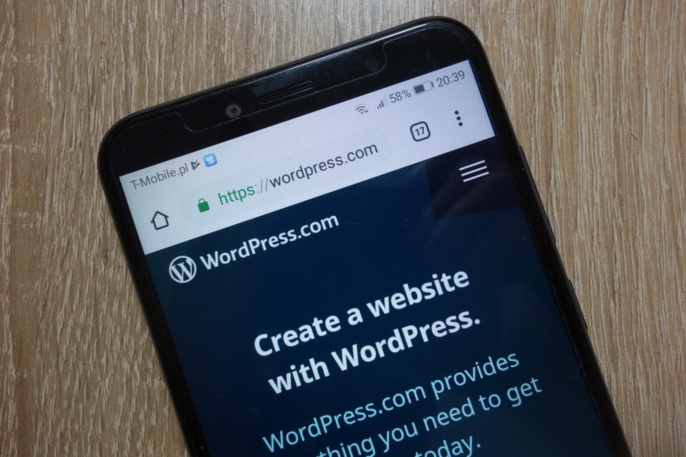 WordPress website displayed on smartphone - The Ins and Outs of Building a WordPress Website from Scratch