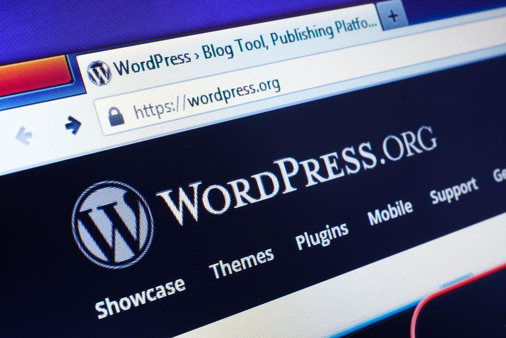Struggling With WordPress?